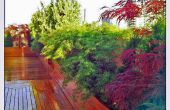 Conception de jardin sur le toit : Ohm Sweet Ohm