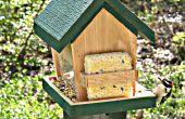 Construire cette mangeoire à oiseaux et Chill Out ornithologie