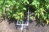 L'eau de pluie système d'irrigation goutte à goutte