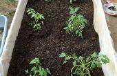 Boîtes de jardin - sur le bon marché !