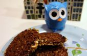 « Night Owl » Mocha Cappuccino dentelle Cookies