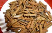 Comment à sec mangues pour Long temps stockage brut