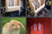 Bunny lapin hydratation gare faite de bois
