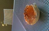 Cendrier de coquille de noix de coco