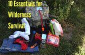 10 éléments essentiels pour la survie de désert