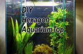 DIY LED hotte pour un Aquarium 20 gallons hexagonale
