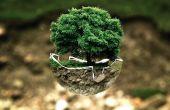 Comment améliorer l'environnement