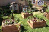 Initiation au jardinage, à l'aide de plates-bandes surélevées