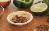 Pesto d'ortie Paleo Cricket