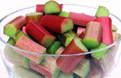 Naturellement fermentées rhubarbe Soda - en cours