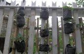Jardin vertical en 10 Minutes !