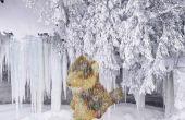Congelés peluches