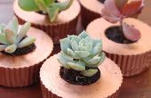 Cupcake jardinières béton