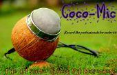 Coco-Mic---Le DIY Studio Quailty micro USB (technologie MEMS)