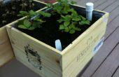 Boîte à vin wicking jardinières