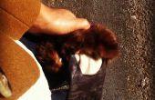 Gants avec une touche de fourrure en cuir