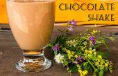 Facile shake chocolat riche (sans produits laitiers) !