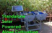 Solaire autonome alimenté par culture d'algues