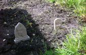 Veg patch cimetière