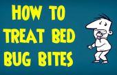 Comment traiter les piqûres de punaises de lit | Traiter les piqûres des insectes et des insectes