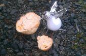 Le Burnt Out Pigeon (métal-trash art)