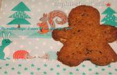 Biscuits aux brisures de chocolat double d'épeautre végétalien !