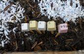 Jardin de Pinckneyville clavier plante marqueurs