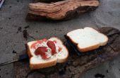 How to Make montagne tartes   Sandwichs de feu de camp