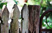 Sauver votre clôture en bois de mildiou