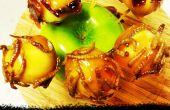 Trick or Treat morsures de pomme au Caramel avec Bacon confit et vers de farine