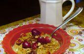 CAFÉ de flocons d'avoine - deux délicieuses recettes rapides pour sauter commencent votre journée !