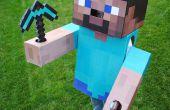 Costume de Steve Minecraft