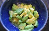 Avocat avec agave et de la chaux