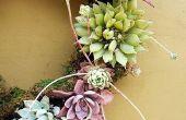 5 étapes faciles pour faire une guirlande de succulentes vivant