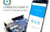 Connaître l'adresse IP publique de votre maison