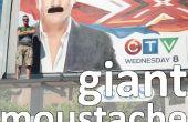 Moustache géant bâton-em