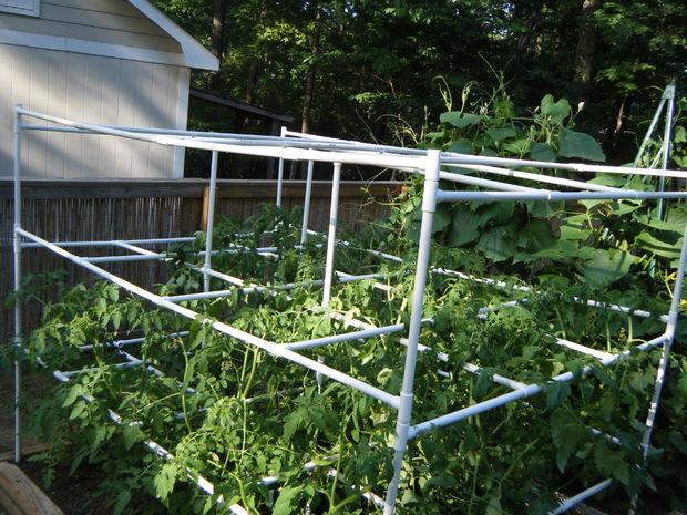 Cage De Tomate Avec Le Pvc Tubefr Com