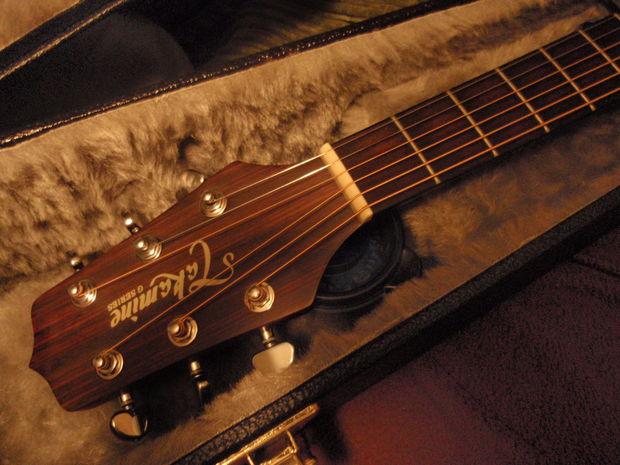 maison humidificateur guitare. Black Bedroom Furniture Sets. Home Design Ideas