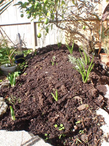 Comment faire un jardin de fleurs surélevé d\'une pile de ...