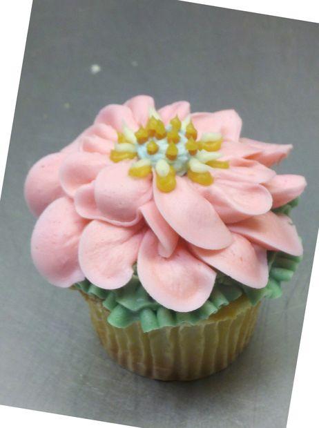 Cupcake Fleur Tubefr Com